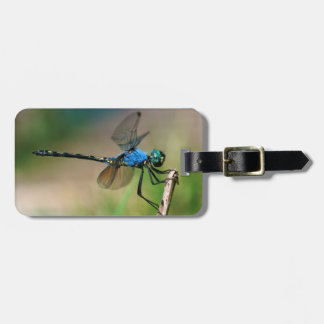 Close-Up Of A Blue Dragon Fly On A Branch Luggage Tag