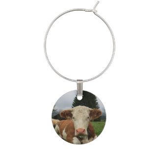 Close up of a brown and white cow laying down wine charm