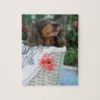 Close-up of a Dachshund dog sitting in a basket Jigsaw Puzzle