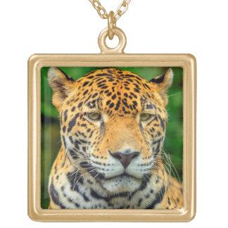 Close-up of a jaguar face, Belize Gold Plated Necklace