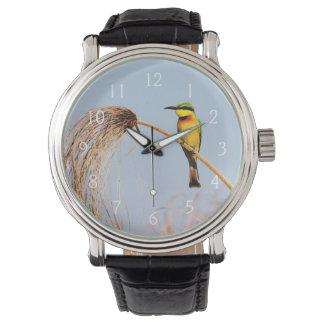 Close-up of a little bee-eater bird wrist watches