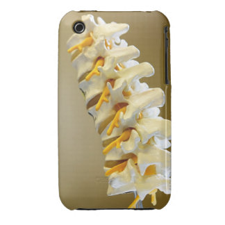 Close-up of a medical model of vertebrae of the iPhone 3 cover