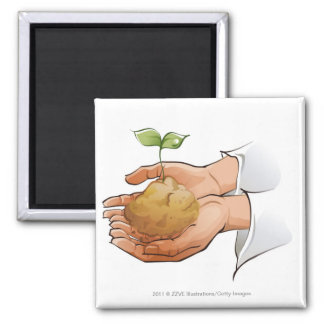 Close-up of a person's hands holding seedling square magnet