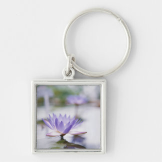 Close-Up of a Purple Water-Lily Floating on Key Chains