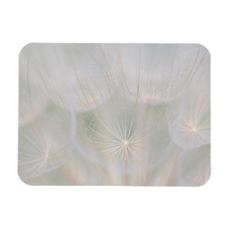 Close up of a seed head, Canada Rectangular Photo Magnet
