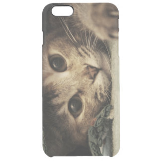 Close up of a tabby cats eyes clear iPhone 6 plus case