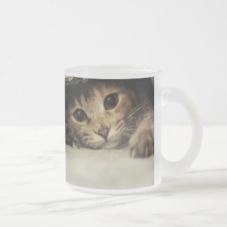 Close up of a tabby cats eyes frosted glass mug