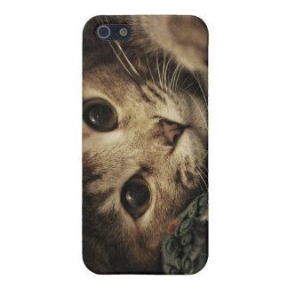 Close up of a tabby cats eyes iPhone 5/5S case