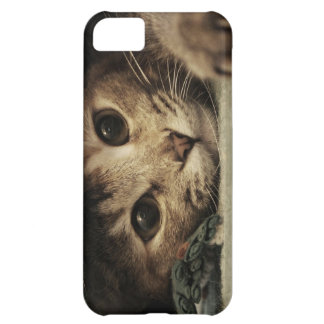 Close up of a tabby cats eyes iPhone 5C case