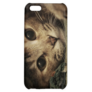 Close up of a tabby cats eyes iPhone 5C cases