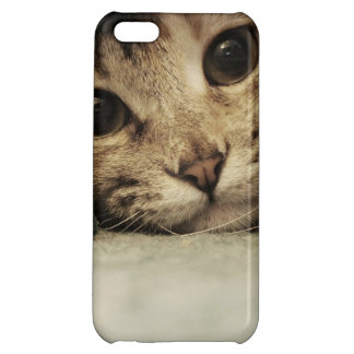 Close up of a tabby cats eyes iPhone 5C covers