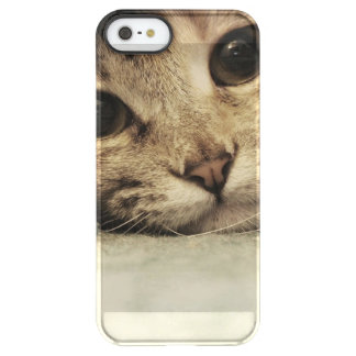 Close up of a tabby cats eyes permafrost® iPhone SE/5/5s case
