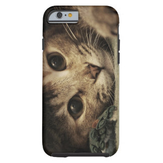 Close up of a tabby cats eyes tough iPhone 6 case