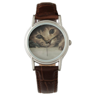 Close up of a tabby cats eyes wrist watch