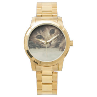 Close up of a tabby cats eyes wristwatch