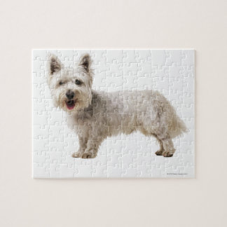 Close up of a terrier jigsaw puzzle