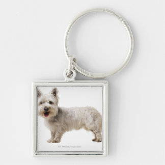 Close up of a terrier keychains