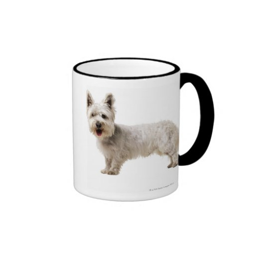 Close up of a terrier coffee mugs
