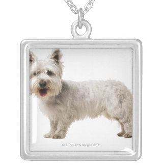 Close up of a terrier square pendant necklace