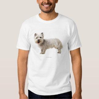 Close up of a terrier t shirt