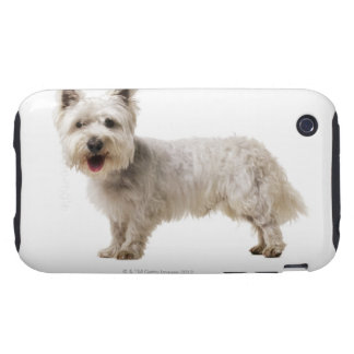 Close up of a terrier tough iPhone 3 cover