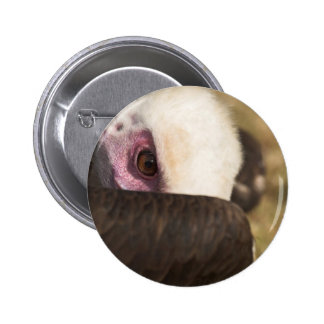 Close up of a Vulture Button Badge