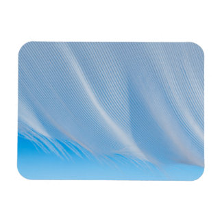 Close-Up Of A White Feather Rectangular Photo Magnet