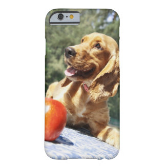 Close-up of an in front of a dog barely there iPhone 6 case