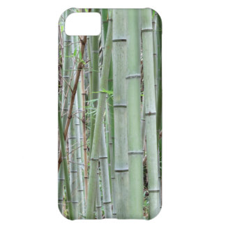 Close-up of bamboo grove iPhone 5C case