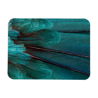 Close up of blue wing feathers magnet