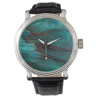 Close up of blue wing feathers watch
