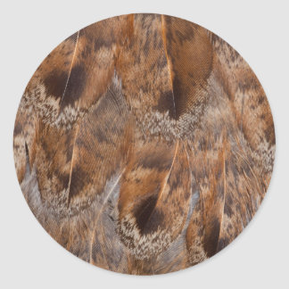 Close Up Of Brown Feathers Classic Round Sticker