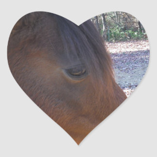 Close up of Brown horse, Little Brown Pony Heart Stickers