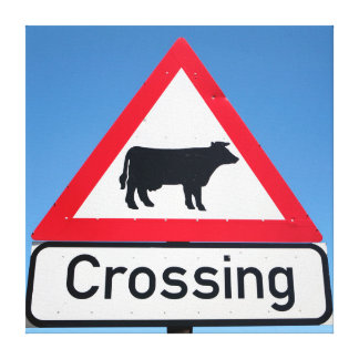 Close-Up Of Cattle Crossing Sign. Western Cape Canvas Prints