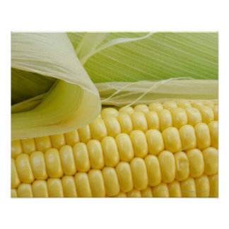Close up of corn poster