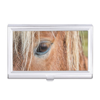 Close-up of eye and head of Icelandic horse Business Card Holders