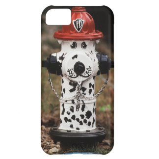 Close-Up of Fire Hydrant iPhone 5C Case
