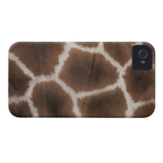 Close up of Giraffes Skin iPhone 4 Cases