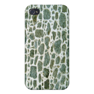 Close-up Of Green Stone Wall With Cement iPhone 4/4S Cover