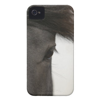 Close-up of  horse eye and hair iPhone 4 Case-Mate case