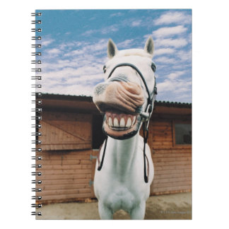 Close-up of Horse with Mouth Open Notebook