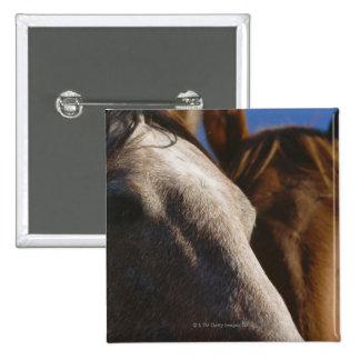 Close Up of Horses 15 Cm Square Badge