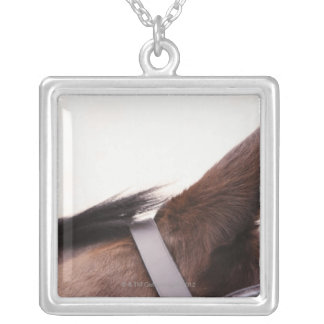close-up of horses ear with bridal square pendant necklace