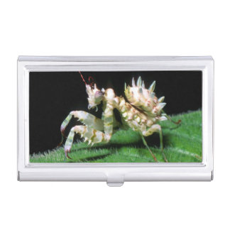 Close-Up Of Hottentot Mantis Case For Business Cards