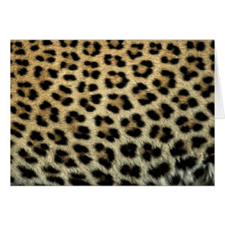 Close up of Leopard spots, Africa Card