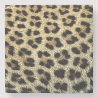 Close up of Leopard spots, Africa Stone Coaster