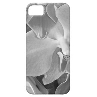 Close up of orchid blossoms in gray scale iPhone 5 cover