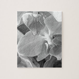 Close up of orchid blossoms in gray scale jigsaw puzzle