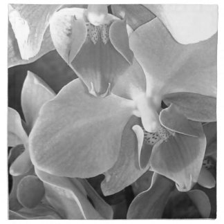 Close up of orchid blossoms in gray scale napkin