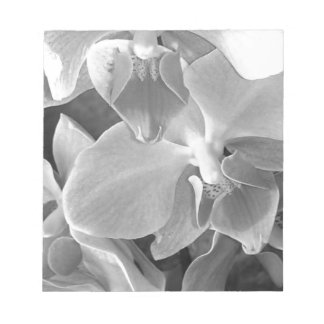 Close up of orchid blossoms in gray scale notepad